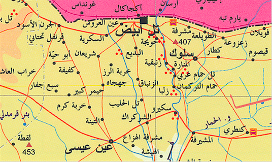Map of Tal Abyad area. The gorge is located near Hammam Turkuman.